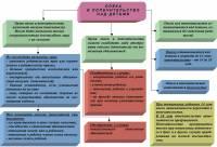 Опека и попечительство понятие и цели органы опеки и попечительства